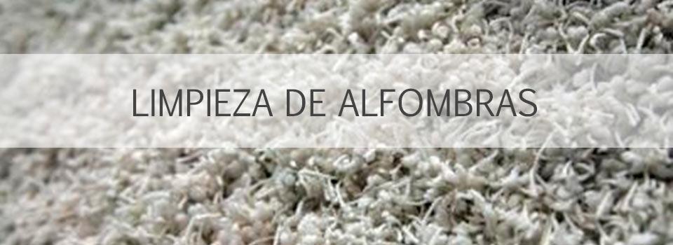SLIDE_ALFOMBRA