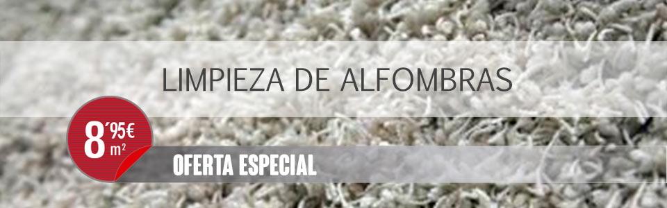 Limpieza limpieza de alfombras la flor - Limpieza de alfombras barcelona ...